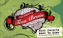 teen brain cover